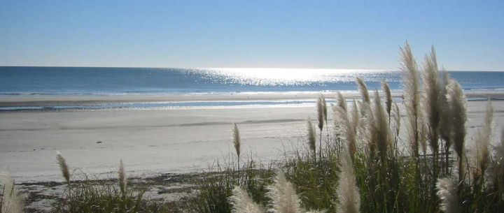 hilton-head-port-royal-sound